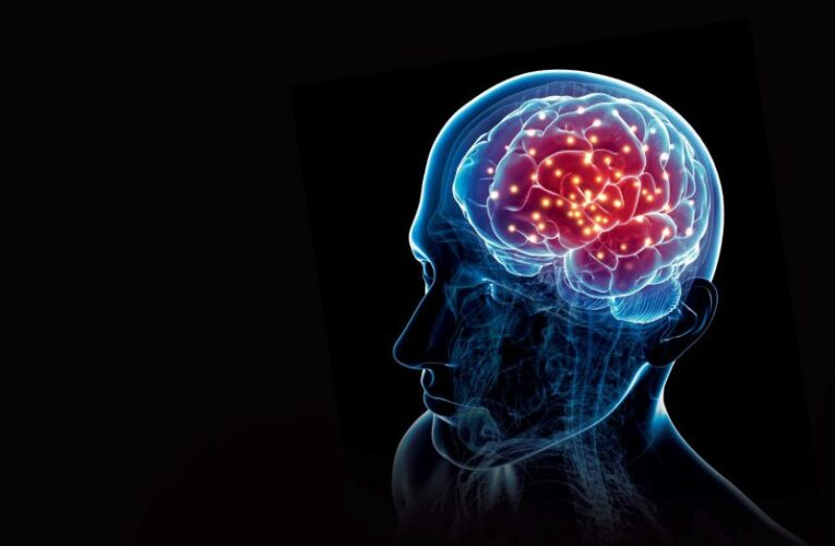 Exercises To Boost Your Brain Memory in Hong Kong